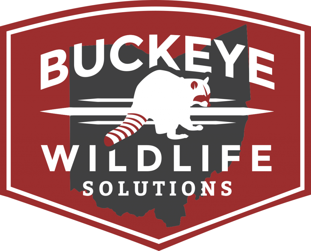 barnes wildlife solutions and buckeye wildlife solutions partnering in Ohio