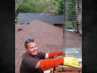 Champaign County Animal Pest Removal always makes sure our clients are 100% satisfied. And we do it with a smile!