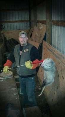 Barnes Wildlife Control owner, Jacob Barnes, caught this large opossum.