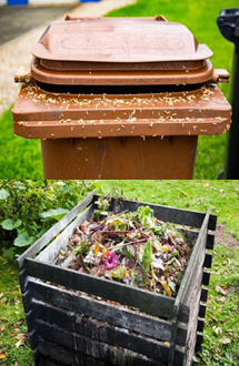 Open Trash Can and Open Compost Piles are a breeding ground for flies.