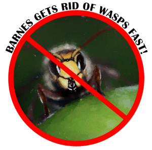 Wasp removal service graphic of get rid of wasps
