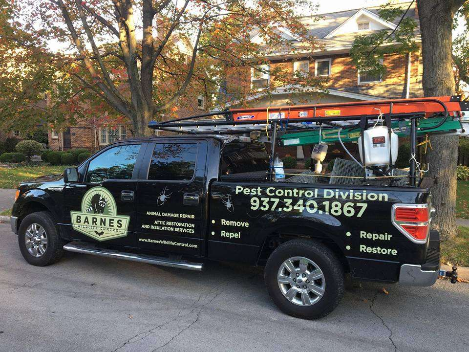 Barnes Wildlife Control's Pest Control Division reminds you about our Insect Removal Services In Greater Dayton Ohio. The Best Insect Removal Services In Greater Dayton Ohio.