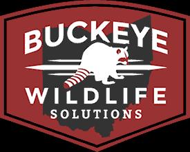 Wildlife Removal & Damage Repairs - Barnes Wildlife Control