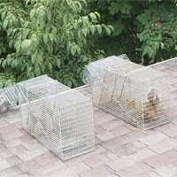 "Free Wildlife Removal – Why Getting Rid of Animals Is Rarely ""Free"""