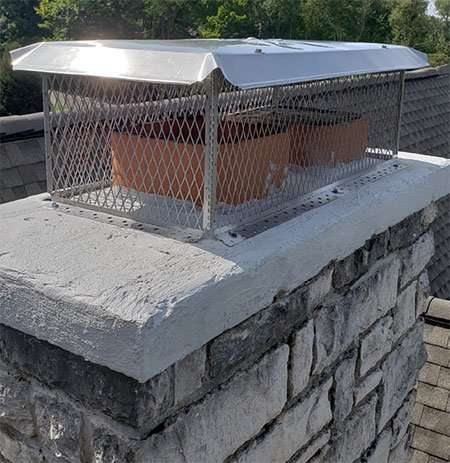 Chimney Animal Removal Repair Service Barnes Wildlife