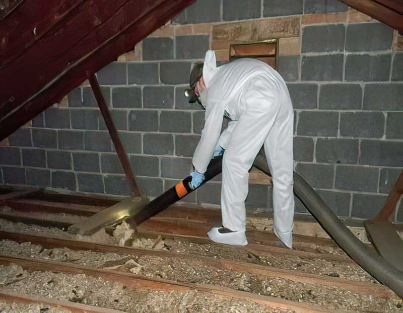 Photo of a Barnes Wildlife Control technician vacuuming soiled insulation contaminated with bat feces.