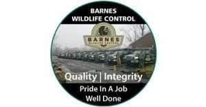 Barnes Wildlife Control staff and logo image