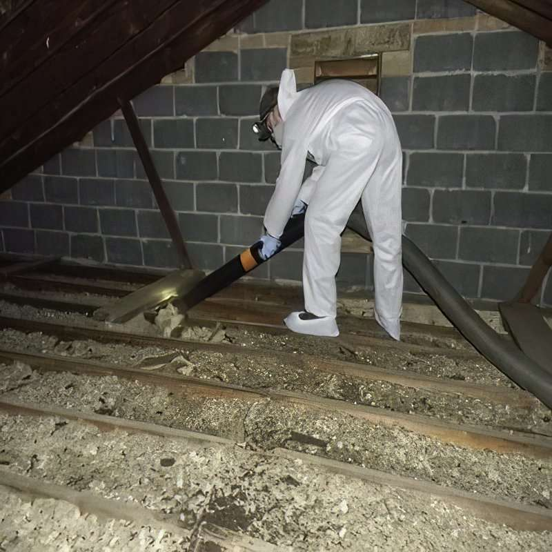 Bats make a horrible mess in an attic but Barnes Wildlife Controls sanitation crew will make your attic sparkle.
